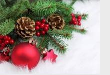 vánoce senioři